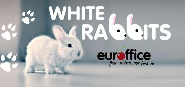 White Rabbits And Shredded Paper