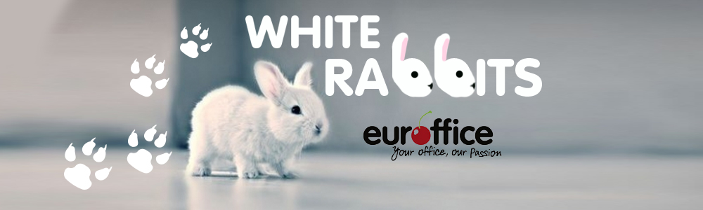 White Rabbits And Shredded Paper