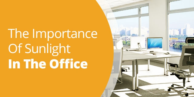 Importance of Daylight in the Office