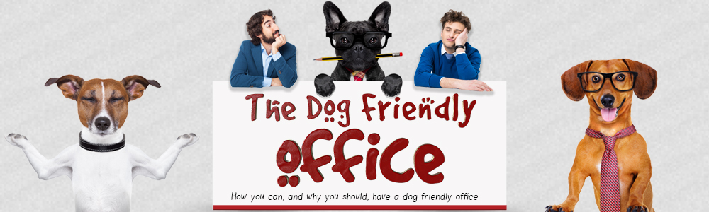 Making your Office Dog-Friendly